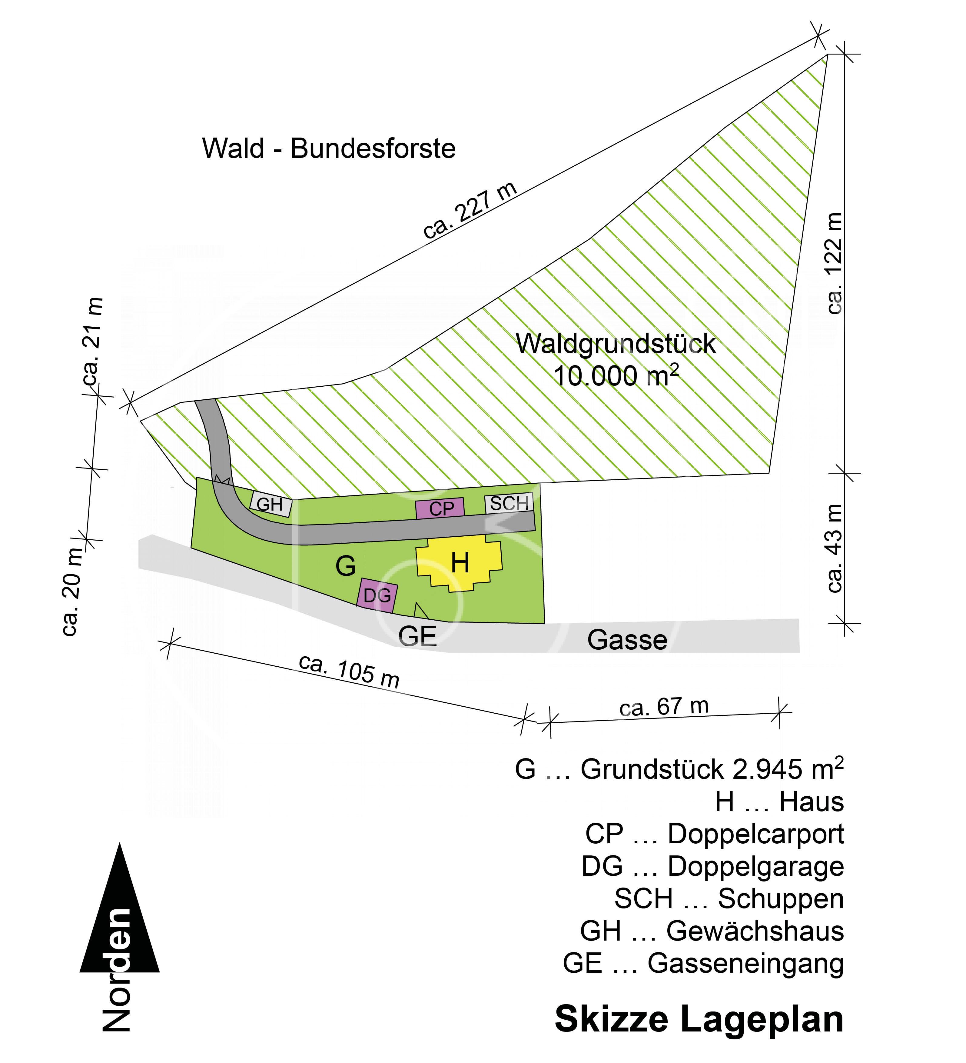 GRUNDRISS - Jahrhundertwendevilla auf Parkgrundstück mit Waldanteil