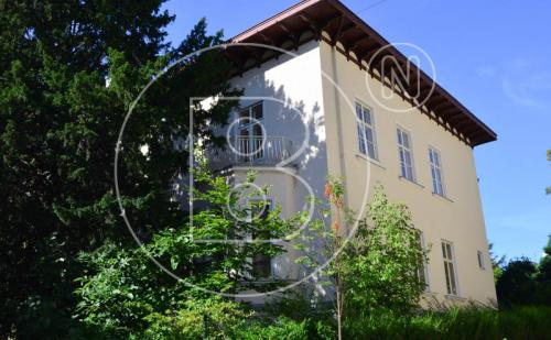 Stilvolle Jahrhundertwendevilla mit Entwicklungspotential