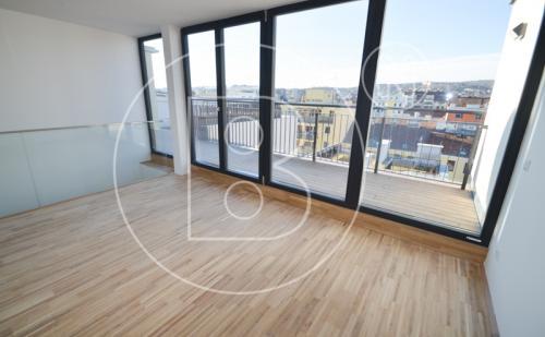 DG-Wohnung mit Terrasse + Dachgarten - ERSTBEZUG!