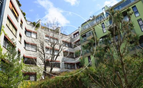 Renovierungsbedürftige 3-Zimmer-Neubauwohnung in Grünruhelage!